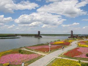 天津古海岸与湿地国家级自然保护区七里海湿地兴坨水库鸟岛科研观测项目